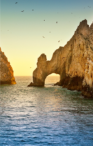 enjoy-cabos_img